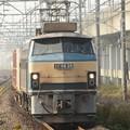 EF66 26号機牽引3085レ 自治医大駅ホームから2014年11月2日撮影