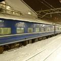 急行はまなす号青い車列24系+14系 青森駅にて