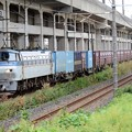 Photos: EF66 103代走4093レ宇都宮貨物(タ)13番入線