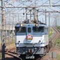 JR貨物30周年HM付きEF65 2095+空コキ臨配8592レ小金井3番通過