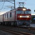 黄昏の貨物列車