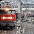 EF510-7号機牽引4076レ京都7番通過