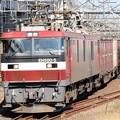 Photos: 金太郎5号機牽引高速貨物94レ
