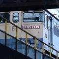 Photos: 貨物駅留置線のEF65原色2139号機