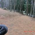 秋葉神社の裏坂下り斜面