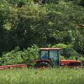 Photos: 農家のおじさんとトンビ