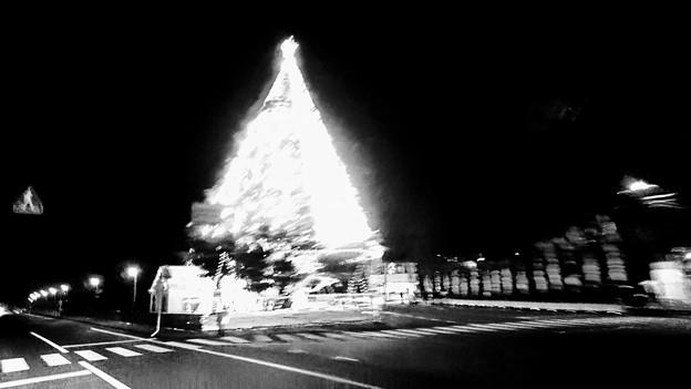 あの日のクリスマスツリー