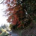rs-141202_26_渓谷橋付近の紅葉(梅が瀬渓谷) (1)