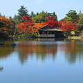 171107_07_日本庭園の様子・S18200(昭和記念公園) (19)