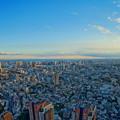 Photos: 六本木ヒルズ 東京シティービュー