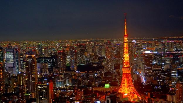 六本木ヒルズ展望台 東京シティビュー スカイデッキ(屋上)