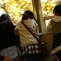 Photos: 紅葉とズームカー娘っこ