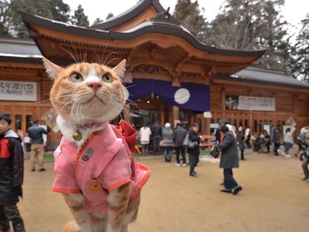 穂高神社へ初詣で