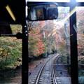 写真: 秋的軌跡