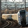 E259成田エクスプレス41号