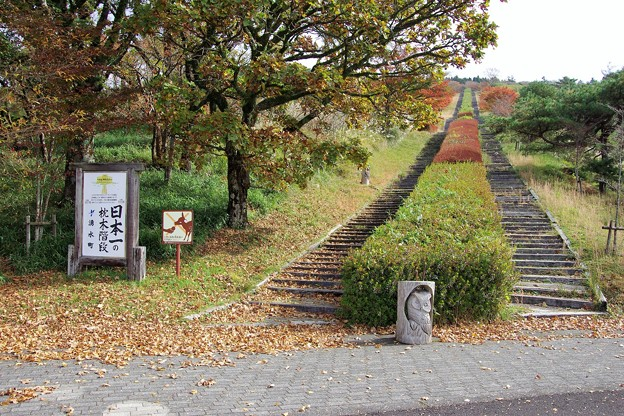 日本一の枕木階段 a