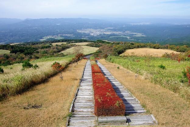写真: 日本一の枕木階段 d