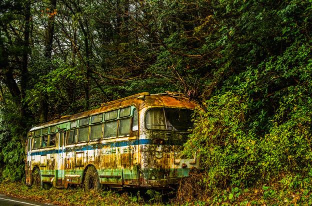 ダム湖のそばの廃バス