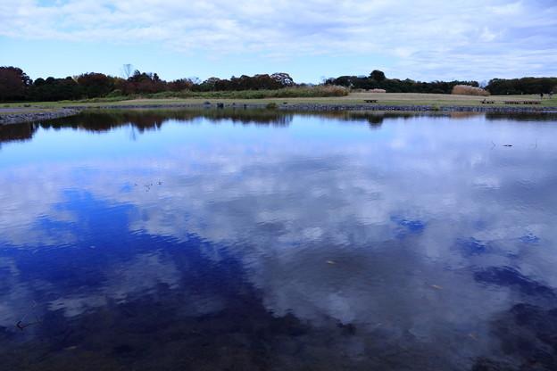 写真: 水の上の雲
