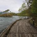140518-3東北ツーリング・十和田湖・乙女の像への道