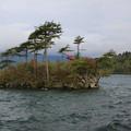 140518-4東北ツーリング・十和田湖・島