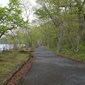 140518-7東北ツーリング・十和田湖・乙女の像への道