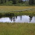 140828-78北海道ツーリング・神仙沼・神仙沼手前の小さな沼