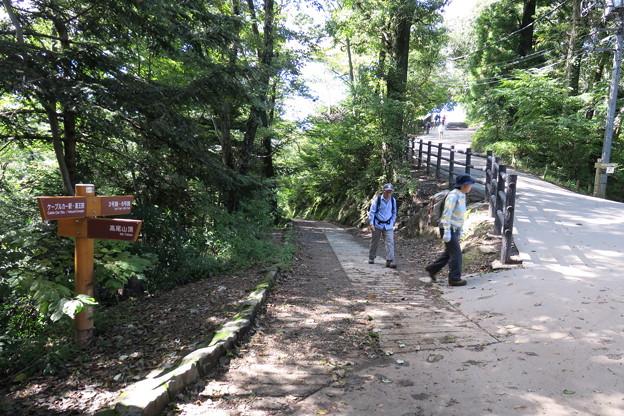 170929-95高尾山・6号路への道