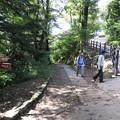 写真: 170929-95高尾山・6号路への道
