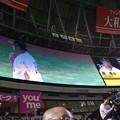 Photos: 森きた!森ー!