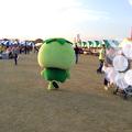 Photos: コタロウ、ダ~っシュ!だす☆
