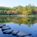 Photos: 日本庭園紅葉