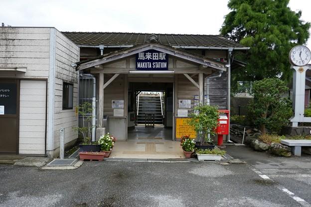 武田川コスモス・菜の花ロード@木更津P1000346
