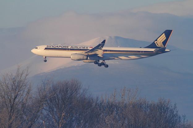 A330-300 9V-STP  SIA [SQ]
