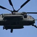 Photos: CH-53E in Northern Viper 2017 (7)
