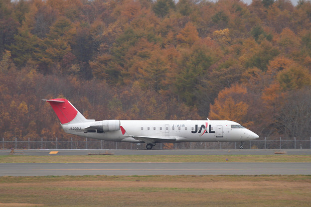 CRJ-200 JA209 晩秋