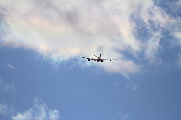 A320 彩雲