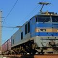 写真: 83レ【EF510-502牽引】
