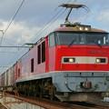 Photos: 83レ【EF510-14牽引】