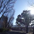 写真: DSC03070