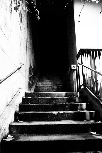霊場への回廊、再度