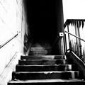 Photos: 霊場への回廊、再度