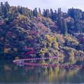 2017 松原湖の紅葉3