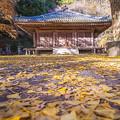2017 富貴寺の紅葉2