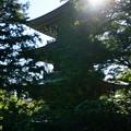 写真: n重の塔