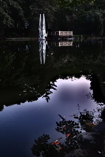 写真: 石神井池のクライシス帝国