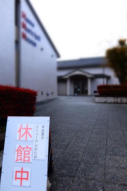 櫻の季節に逢いましょう