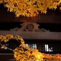 Photos: 黄金色の装飾
