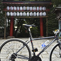 DSC_5603 根津神社にて