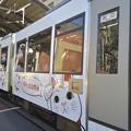 DSC_5728 招き猫ラッピング車両、Welcome!!